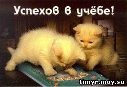 Сайт Тимура Записки о мироздании.